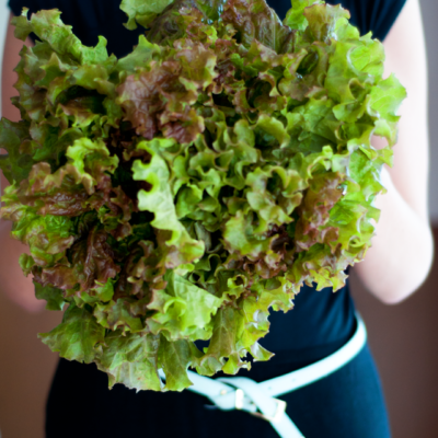 From Farm to Table: My Detox Salad