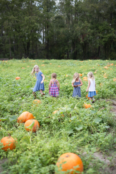 Fall in America! Hayrides & Pumpkin Patches